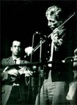 fiddlery